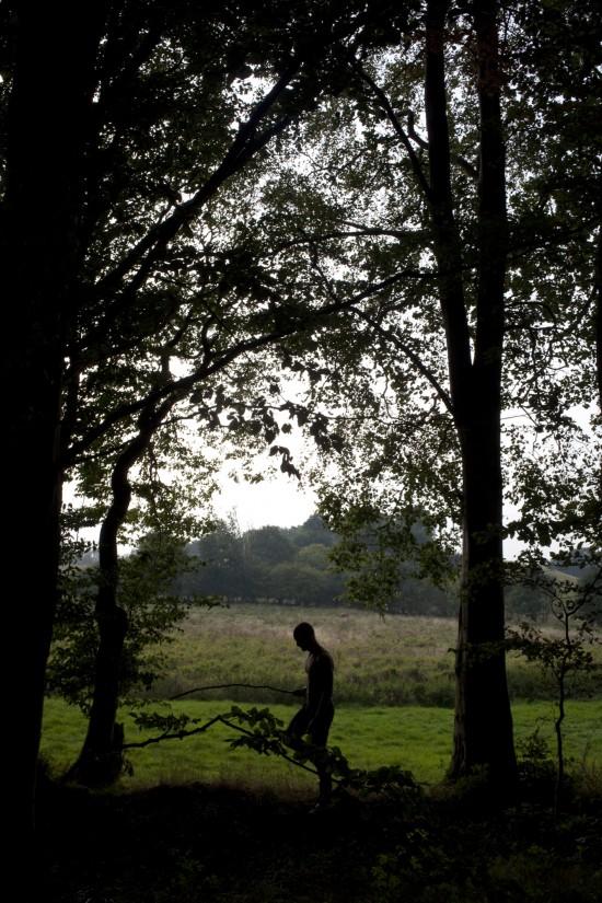 Daniel_van_Flymen_FOREST_011