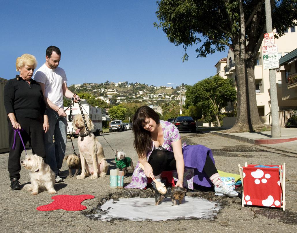 Dog Wash on Alfred Street(72dpi)