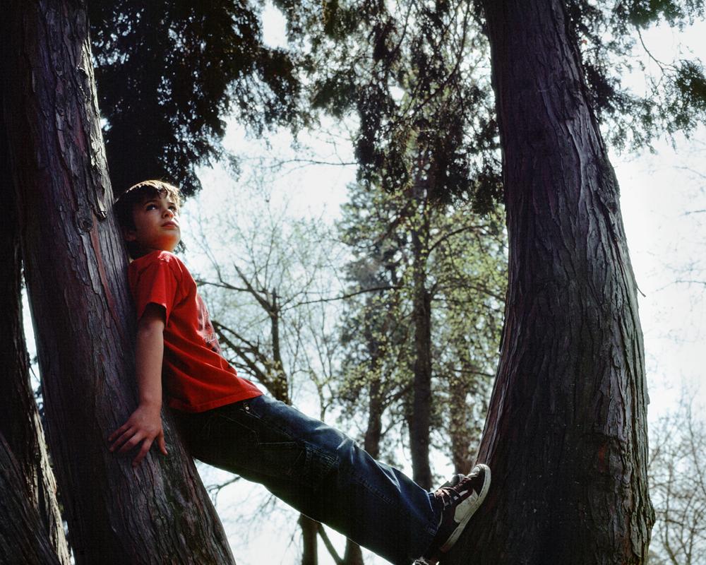 Izak-in-Trees