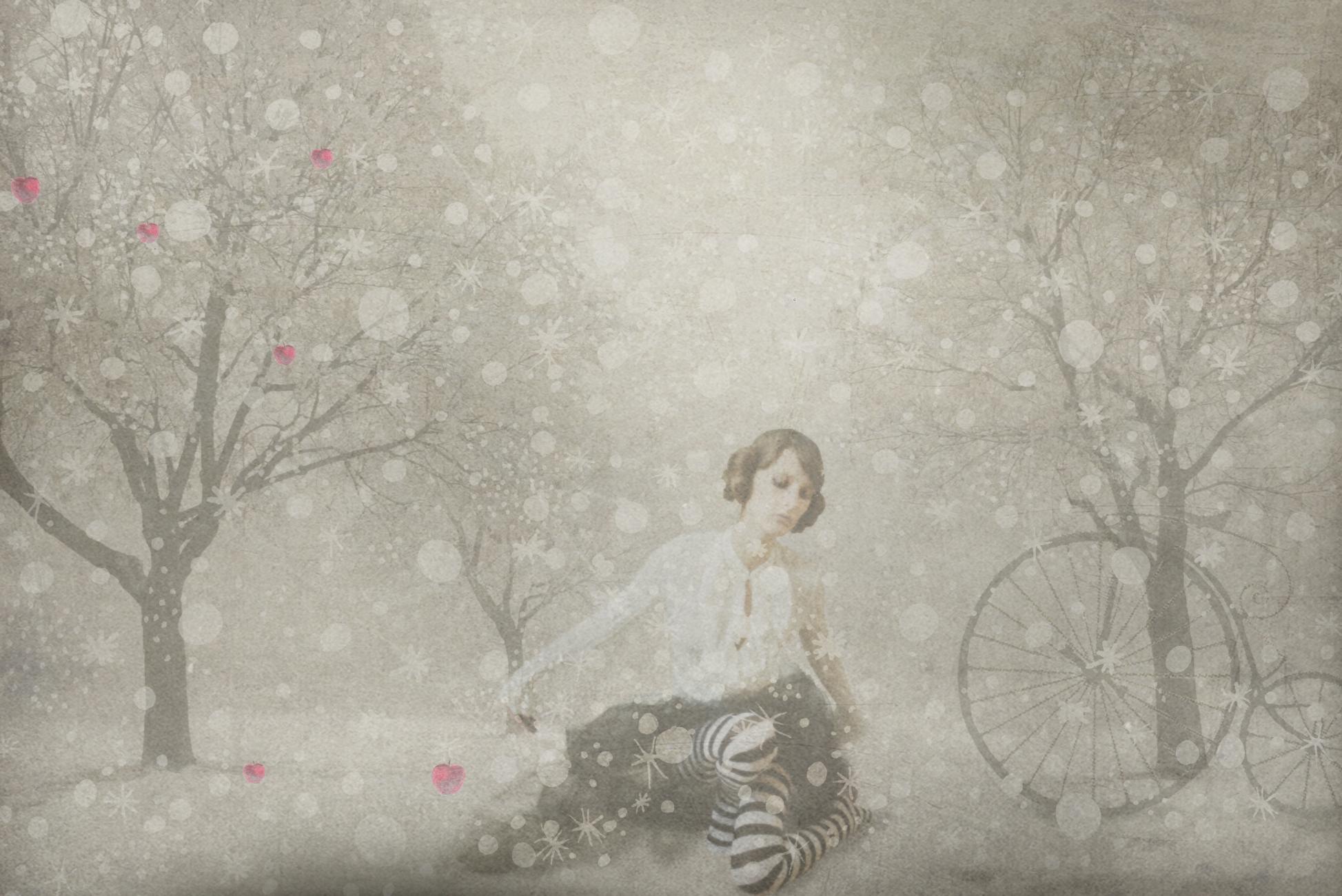 marie sous la neige BD